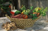 Europe/France/Provence-Alpes-Côte d'Azur/06/Alpes Maritimes/Arrière pays niçois: Panier de légumes d'été, fleurs de courgettes, haricots coco, ail, aubergine, poivrons, tomates