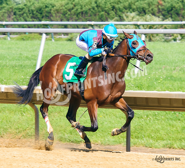 Hey Willie winning at Delaware Park on 6/9/16