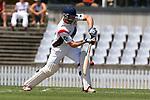 NELSON, NEW ZEALAND - 110 Over Cricket Final. WTTU v Stoke/Nayland. Saxton Oval, Richmond, New Zealand. Saturday 2 February 2019. (Photo by Evan Barnes/Shuttersport Limited)
