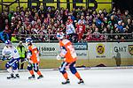 Bolln&auml;s 2013-10-25 Bandy Elitserien Bolln&auml;s GIF - Edsbyns IF :  <br /> Edsbyn supportrar p&aring; bortal&auml;ktaren p&aring; S&auml;vsta&aring;s IP under matchen <br /> (Foto: Kenta J&ouml;nsson) Nyckelord:  supporter fans publik supporters