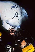 wildlife photographer, James D. Watt, and reef manta ray, Manta alfredi, Kona, Big Island, Hawaii, Pacific Ocean