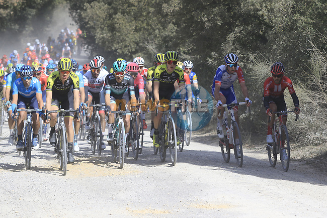 The peloton on sector 3 Radi during Strade Bianche 2019 running 184km from Siena to Siena, held over the white gravel roads of Tuscany, Italy. 9th March 2019.<br /> Picture: Eoin Clarke | Cyclefile<br /> <br /> <br /> All photos usage must carry mandatory copyright credit (© Cyclefile | Eoin Clarke)