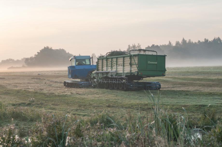 Natuurbeheer met wetland-track in het Beleven