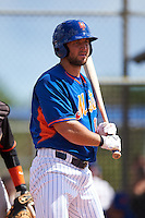 New York Mets outfielder Tim Tebow (15) at bat during an Instructional League game against the Miami Marlins on September 29, 2016 at Port St. Lucie Training Complex in Port St. Lucie, Florida.  (Mike Janes/Four Seam Images)