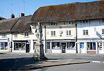 King Alfred statue in the market place and thatched shop buildings in the village of Pewsey, Wiltshire, England