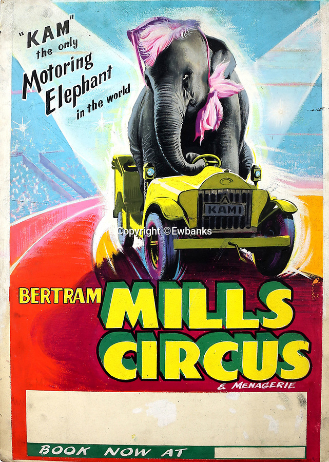 BNPS.co.uk (01202 558833)<br /> Pic: Ewbanks/BNPS<br /> <br /> 'Kam the only Motoring elephant in the World'.<br /> <br /> What we're they thinking! - incredibly inappropriate circus artworks from a time before political correctness was ever heard off come up for sale.<br /> <br /> A collection of original artwork for vintage circus posters that hark back to a less politically correct time have emerged for sale for more than £30,000.<br /> <br /> Over 300 classic designs are set to go under the hammer, several of which involve performing animals in fancy dress as part of the act.<br /> <br /> They were produced by W. E. Berry Ltd of Bradford, West Yorks, who were industry leaders for posters for more than 75 years from the 1920s.<br /> <br /> The firm made and distributed posters for the likes of Disney, Universal and Columbia Pictures during a highly successful period at the top.