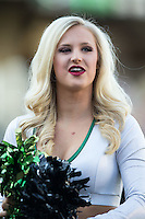 Members of the Charlotte 49ers dance team were on hand for the baseball game against the North Carolina State Wolfpack at BB&T Ballpark on March 31, 2015 in Charlotte, North Carolina.  The Wolfpack defeated the 49ers 10-6.  (Brian Westerholt/Four Seam Images)