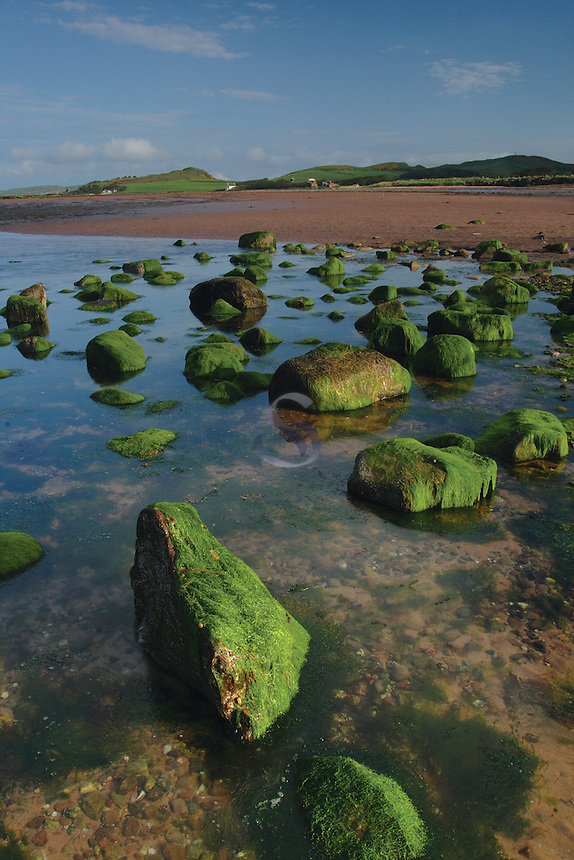 Green Boulders, West Kilbride Beach, West Kilbride, Ayrshire<br /> <br /> Copyright www.scottishhorizons.co.uk/Keith Fergus 2011 All Rights Reserved