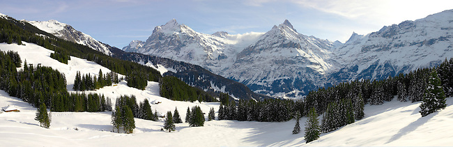 The wetterhorn and Schreckhorn mountains from Busalp tobogan slopes - near Grindelwald - Swiss Alps - Switzerland