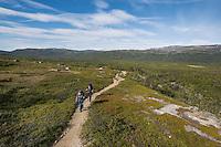 Female hikers hike on trail between Abiskojaure and Alesjaure, Kungsleden trail, Lapland, Sweden