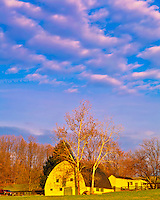 Barn in Morning Light, Rural Horse Country of Maryland