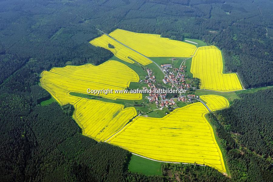 Rapsfelder um den Ort Lichtenau in Thüringen: DEUTSCHLAND,THUEHRINGEN, LICHTENAU 11.05.2016: Lichtenau liegt nordwestlich von Neustadt an der Orla.  Das Dorf liegt auf einer Hochfläche der Saale-Elster-Sandsteinplatte und ist von Rapsfeldern  und dann von Wald umgeben. Es befindet sich auf einer höher gelegenen Ebene in einer grünen Insel. Sie ist von Wald und Wiesen und Weiden sowie Feldern noerdlich des Orlatals umgeben.