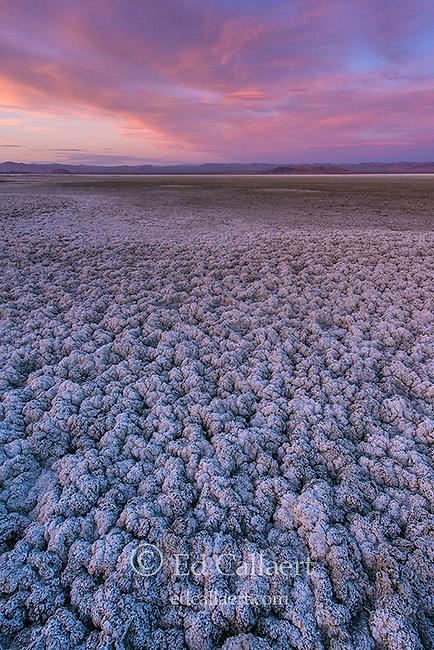 Sunset, Soda Lake, Zzyzx, Mojave National Preserve, California