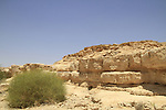 Israel, Lower Wadi Tzafit in the Negev