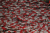Bayern's supporter during the Champions League Group E soccer match between As Roma and FC Bayern Munchen at the Olympic Stadium in Rome october 21 , 2014.
