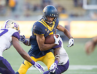 CAL Football vs Washington, October 11, 2014