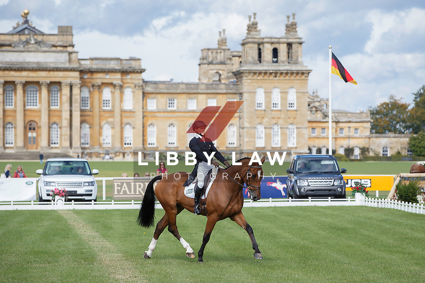 NZL-Blyth Tait (BEAR NECESSITY V) INTERIM-25TH: CCI3* FIRST DAY OF DRESSAGE: 2015 GBR-Blenheim Palace International Horse Trial (Thursday 17 September) CREDIT: Libby Law COPYRIGHT: LIBBY LAW PHOTOGRAPHY