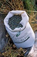 Europe/France/Auvergne/43/Haute-Loire/Env du Puy-en-Velay: Lentilles vertes AOC du Puy-en-Velay //  France, Haute Loire,  near Le Puy en Velay, Green AOC lentils du Puy en Velay