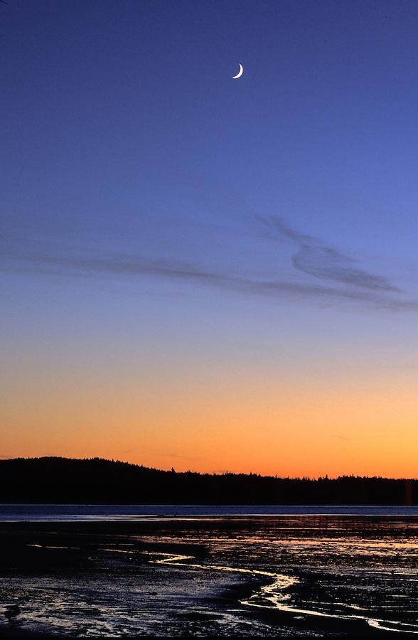 Moon over Machias Bay mudflats near Cutler, Maine
