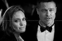 Angelina Jolie & Brad Pitt, American Actors.