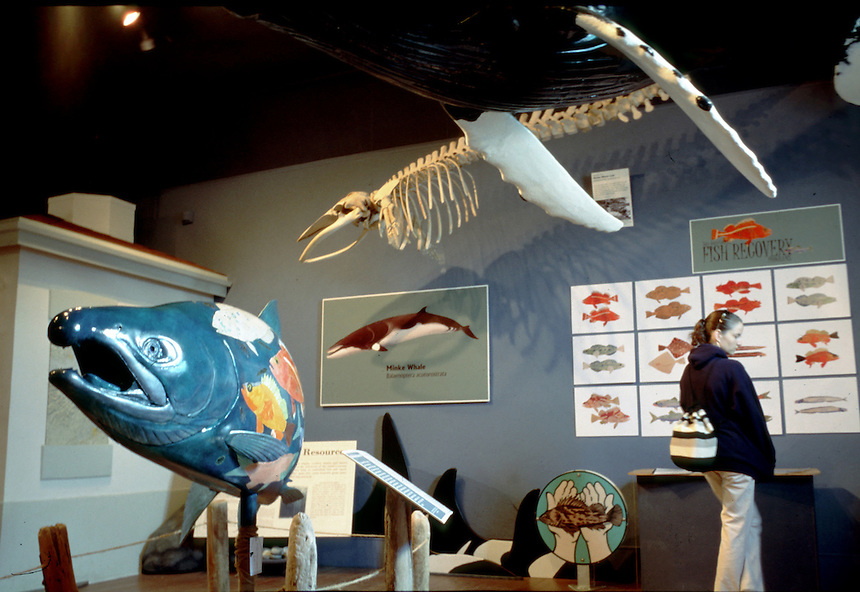 Whale Museum in Friday Harbor on San Juan Island Wash.