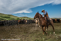 the web Cowboys working and playing. Cowboy Cowboy Photo Cowboy, Cowboy and Cowgirl photographs of western ranches working with horses and cattle by western cowboy photographer Jess Lee. Photographing ranches big and small in Wyoming,Montana,Idaho,Oregon,Colorado,Nevada,Arizona,Utah,New Mexico.
