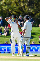 Ish Sodhi and Colin De Grandhomme of the Black Caps during the final day of the Second International Cricket Test match, New Zealand V England, Hagley Oval, Christchurch, New Zealand, 3rd April 2018.Copyright photo: John Davidson / www.photosport.nz