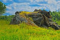 Glacial erratic boulder<br />Kenora<br />Ontario<br />Canada
