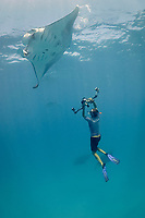 manta ray researcher, Guy Stevens, taking photos of unique individual markings - belly spots, used to identify reef manta rays, Manta alfredi, that are feeding on plankton in Hanifaru Bay, Baa Atoll, Maldives, Indian Ocean