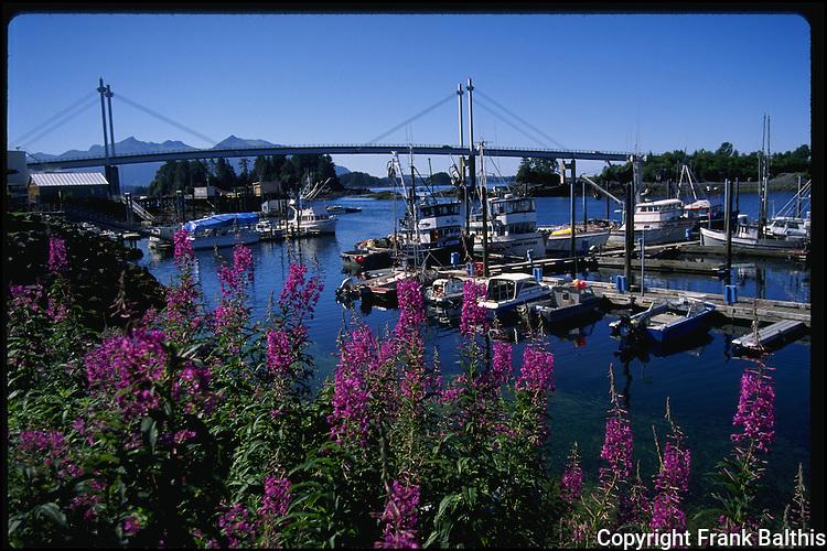 Bridge in Sitka