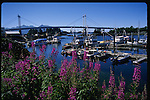 Bridge in Sitka