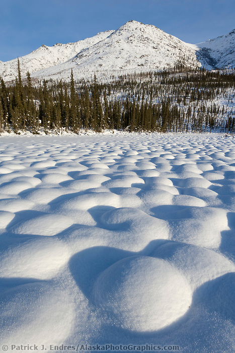 Snow covered tussocks in the tundra landscape north of Coldfoot, Alaska in the Brooks mountain range.