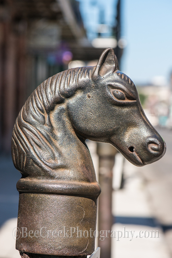 These cast iron hitching post can be found through out the french quarters and are a charming feature which were once used to hitch your horse to.  They were said to have a stepping stool in the beginning so women and children could get on easier.