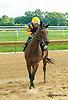 Settle n' Speight winning at Delaware Park on 9/5/15