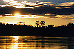 The sunset turns the Amazon River to gold and silhouettes the trees against a golden, cloud-filled sky.