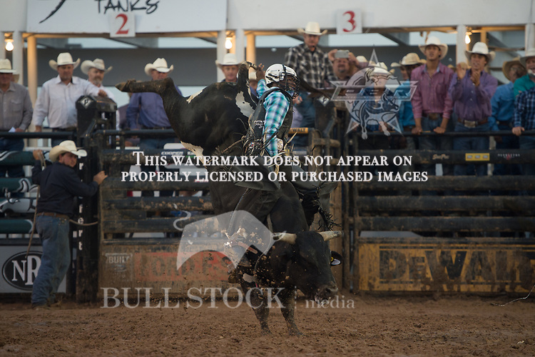Ezekiel Mitchell attempts War Crime of Rickey West Bucking Bulls during the JW Hart Challenge event in Decatur, TX - 6.3.2016. Photo by Christopher Thompson