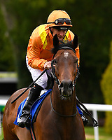 Turaathy ridden by Steve Drowne goes down to the start of the Dartmouth General Contractors Ltd Handicap (Div 1),  during Afternoon Racing at Salisbury Racecourse on 7th August 2017