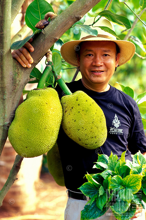 Keo Sananikone, owner of several popular Thai restaurants on Oahu, standing by a jack fruit tree on his farm in Waialua