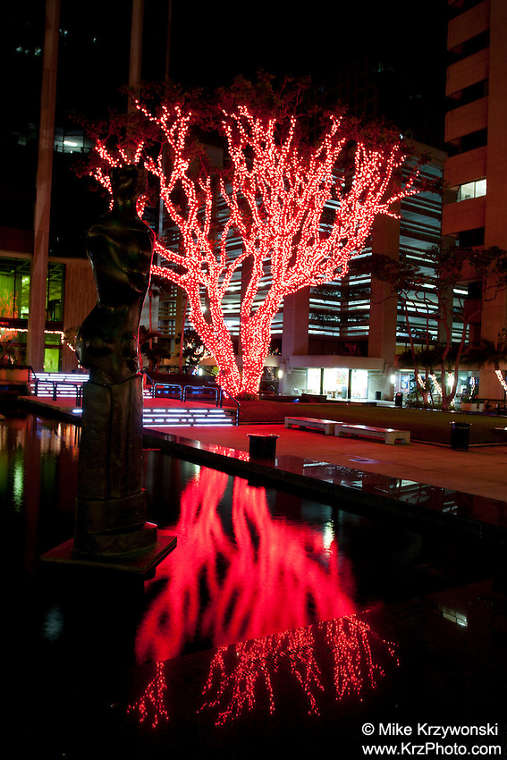 Tree decorated w/ red Christmas lights reflecting in water in Downtown Honolulu, Oahu, Hawaii