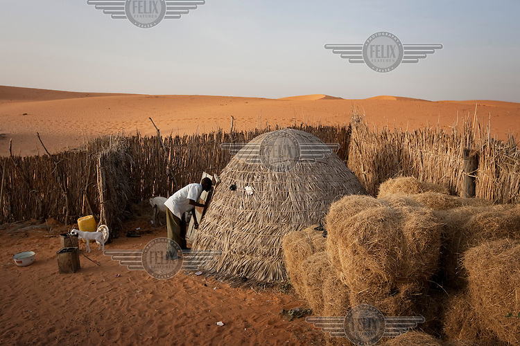 A man lives with his goats in the village of Tulotoluwa, which is under threat from the encroaching Sahara desert.