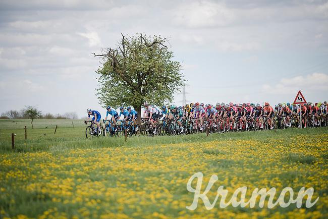83rd La Flèche Wallonne 2019 (1.UWT)<br /> One day race from Ans to Mur de Huy (BEL/195km)<br /> <br /> ©kramon