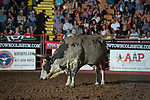 Longhorn during first round of the Fort Worth Stockyards Pro Rodeo event in Fort Worth, TX - 8.9.2019 Photo by Christopher Thompson