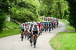 The peleton with Luke Rowe (WAL) Team Sky on the front during Stage 2 of the 2018 Criterium du Dauphine 2018 running 181km from Montbrison to Belleville, France. 5th June 2018.<br /> Picture: ASO/Alex Broadway | Cyclefile<br /> <br /> <br /> All photos usage must carry mandatory copyright credit (&copy; Cyclefile | ASO/Alex Broadway)