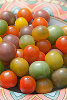 Tomatoes, cherry tomato variety mix of colors including red, yellow, green purple, heirloom, harvested in southwestern style bowl