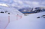 Iceland 03/04 2007