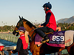 October 30, 2019: Breeders' Cup Juvenile Fillies Turf entrant Living In The Past, trained by Karl Burke, exercises in preparation for the Breeders' Cup World Championships at Santa Anita Park in Arcadia, California on October 30, 2019. Scott Serio/Eclipse Sportswire/Breeders' Cup/CSM