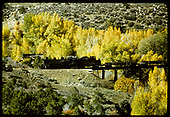 D&amp;RGW #480 crossing trestle with scrap rails.<br /> D&amp;RGW  Durango area ?, CO