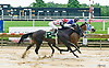 Dennis' Diamond winning at Delaware Park on 7/29/17