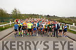 The Tralee Marathon on Saturday morning.