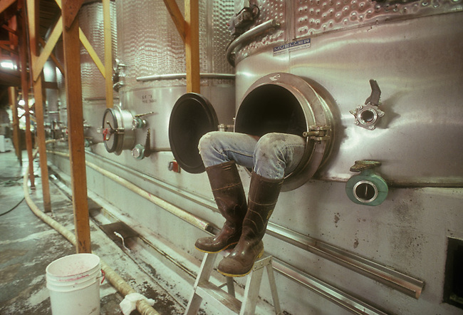 Winery workers climbs into stainless steel fermentation tank